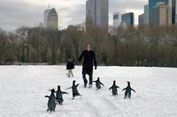 Los Pingüinos de Papá