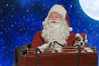 El Perrito de Santa