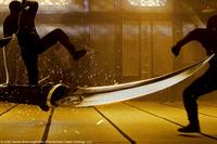 Asesion ninja
