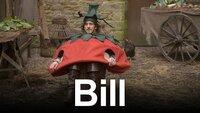Bill (UK)