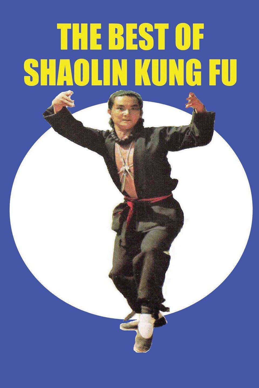 Wan fa gui zong yi Shao Lin (Best of Shaolin Kung Fu)