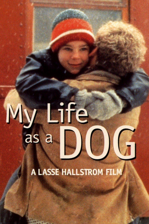 My Life as a Dog (Mitt Liv som Hund)
