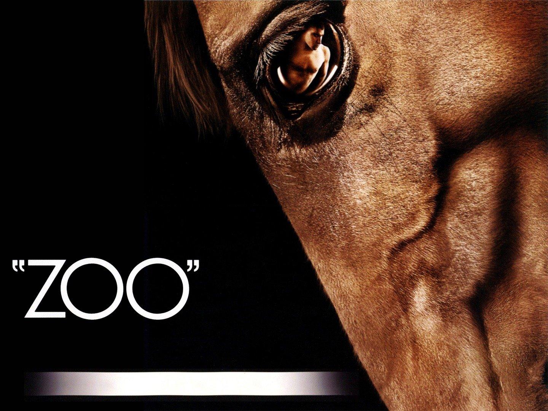 Zoo taboo apps.inn.org