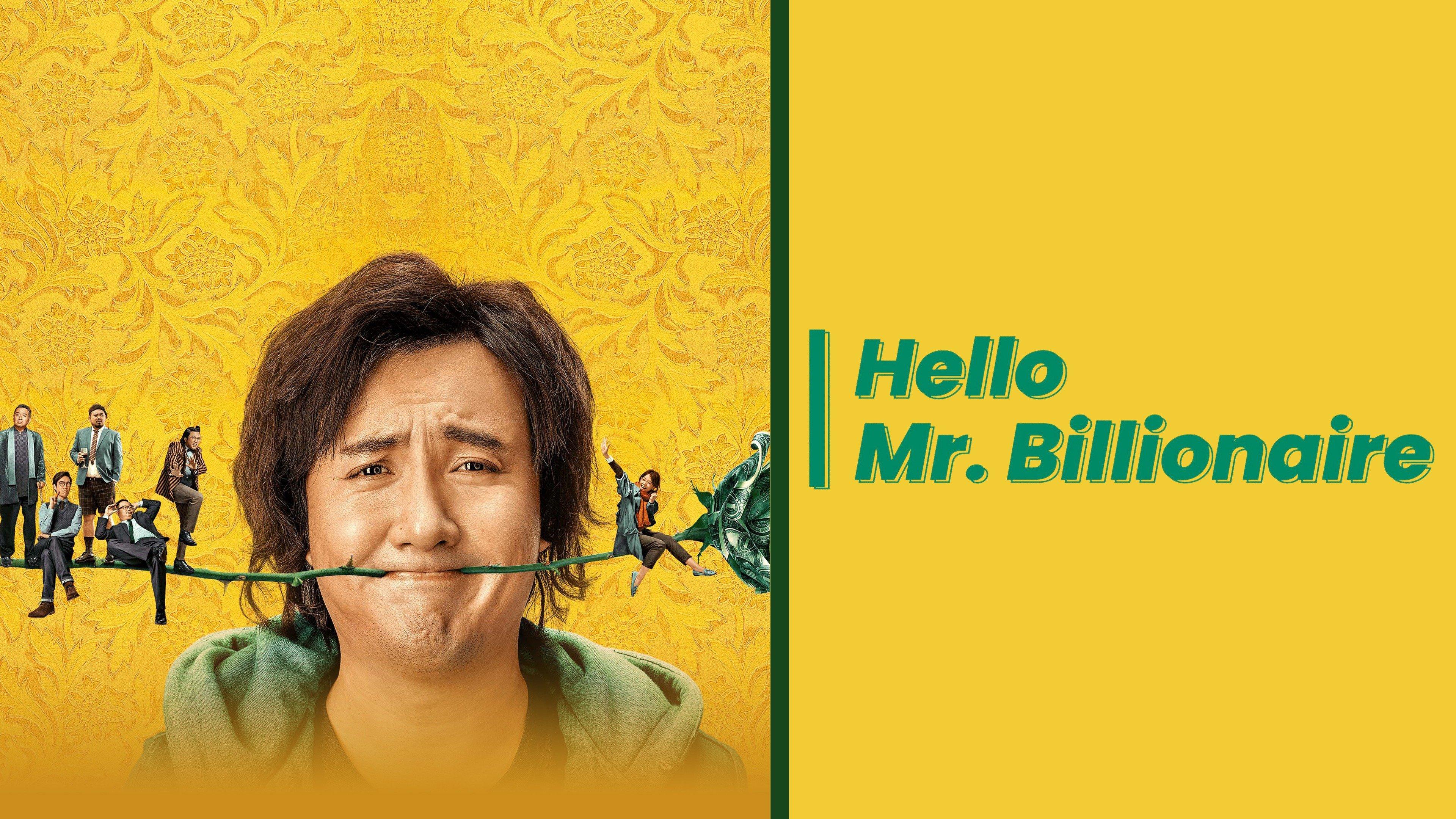 Hello Mr Billionaire Flixster